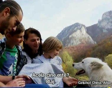 Curaj sau nebunie? O familie din Bucuresti s-a hotarat sa traiasca in salbaticie:...