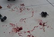 Si-au dus copilul la scoala si l-au gasit intr-o balta de sange! Este cumplit ce i-au facut bietului baiat cu dizabilitati