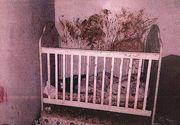 """Imagini infioratoare din """"casa groazei"""", acolo unde trei copii au fost gasiti mai mult morti decat vii"""