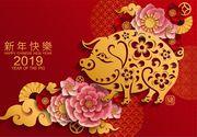 Zodiac chinezesc 2019. Vine Anul Mistreţului de Pământ!