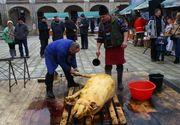 Au tăiat porcul în curtea muzeului! Imagini incredibile surprinse într-un muzeu din România, în ziua Ignatului!