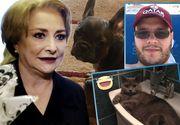Familia Vioricăi Dăncilă are acasă o mulţime de animale! Victor, băiatul premierului, este foarte ataşat de pisicile şi de câinii lui FOTO
