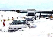 Ninsorile fac prăpăd! Trafic rutier complet blocat din cauza zăpezii și a copacilor căzuți