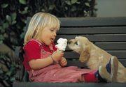 Gest impresionant făcut de o fetiţă. Şi-a donat banii de Crăciun pentru câinii unui adăpost din Carei