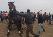 Dosar penal in scandalul schingiuirii animalelor de la Botezul cailor, din Visina!