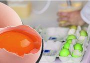 ALERTĂ în Teleorman! Patru MILIOANE de ouă, infectate cu Fipronil! Efectele devastatoare pe care le poate avea asupra organismului