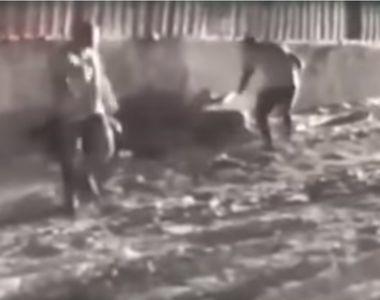 VIDEO. Momentul în care criminalul eliberat prin recursul compensatoriu atacă un tânăr...