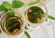 9 ceaiuri din plante cu efecte surprinzătoare pentru sănătate
