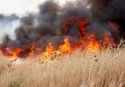 Incendiu în Tulcea. Peste 20 de ha de vegetație afectate