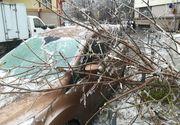 Mijloacele de transport au fost grav afectate de vremea de afară