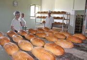 Suntem pe locul 1 in Europa la consumul de paine, dar si la risipa alimentara! Cu ce arunca romanii, s-ar putea hrani o tara intreaga!