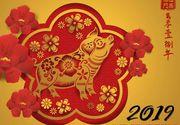 Am intrat în anul Mistrețului de Pământ! Ce înseamnă asta în mitologia chineză. Vezi cum îți influențează viața!