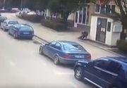 VIDEO. Două persoane au fost mușcate de un porc mistreț în plină stradă