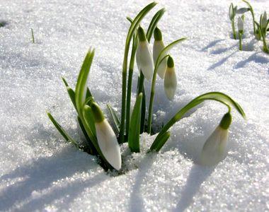 Prognoza meteo până în martie! Cum va fi vremea la început de primăvară