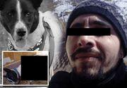 Stăpânul adăptostului de la Prejmer și-a reactivat contul cu imaginea cățelului pe care l-a lăsat să moară!