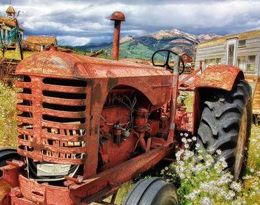 O comuna din Dolj atrage agricultorii ca un magnet. Ce o face atat de specială?
