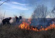 Delta Dunarii! Hectare intregi au fost cuprinse de flacari din pricina localnicilor care au dat foc vegetatiei uscate