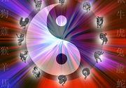 Zodiac chinezesc MARTIE 2019. Ce MESAJ și ATENȚIONARE are zodia ta pentru perioada imediat următoare
