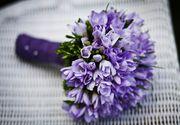 8 Martie aduce, in florarii, venituri chiar si de 20 de ori mai mari decat in orice alta zi din an!