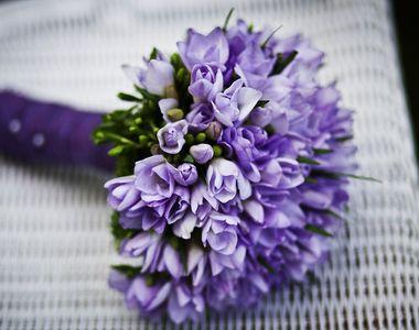 8 Martie aduce, in florarii, venituri chiar si de 20 de ori mai mari decat in orice...