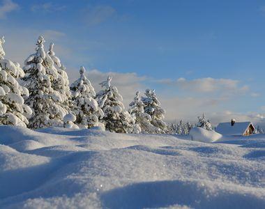 Cod galben de vânt în weekend. La munte va ninge viscolit