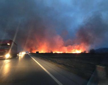 Incendiu de vegetație la ieșirea din Făgăraș! Flăcări de 5 metri. Traficul pe DN1 e blocat