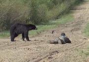 Un bărbat din judeţul Harghita a murit după ce a fost atacat de un urs, într-o pădure
