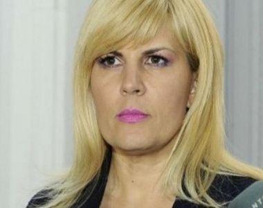 Elena Udrea, despre sesizarea pe care ICCJ vrea să o trimită Curţii Europene de...