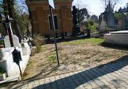 Adevărul despre mormântul Zinei Dumitrescu! Imagini cu locul de veci de la Bellu pe care creatoarea l-a cumpărat acum 25 de ani
