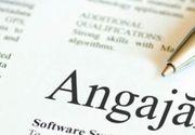 Locuri de muncă în străinătate pentru români. Ce meserii se caută