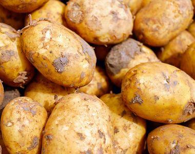 VIDEO | Pietele si magazinele sunt invadate de cartofii noi! Uite cum te înșeală...