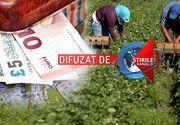 VIDEO| Romanii plecati la munca in strainatate trimit sume frumoase acasa! Vezi cati bani intra lunar in Romania