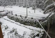 Iarnă în plină primăvară! Unde a nins ca-n povești