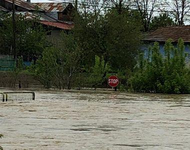 VIDEO | Ploile si viiturile au facut prapad in mai multe judete