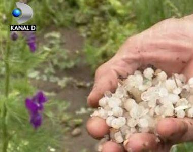 VIDEO   Grindina a devastat totul in cale