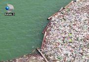 VIDEO | Rauri de gunoaie dupa viitura. Ce amenzi poate da Garda de Mediu