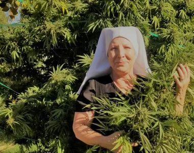 Măicuța Kate, cultivatoare de marijuana