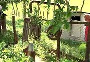 VIDEO   Reportaj din satul cu 10 locuitori. Nu au apa si autoritatile i-au uitat