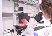 Un medicament inovator contra cancerului a fost testat cu succes pentru prima dată pe pacienţi