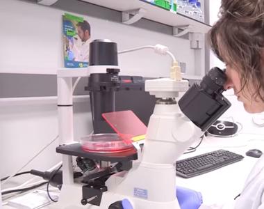 Un medicament inovator contra cancerului a fost testat cu succes pentru prima dată pe...
