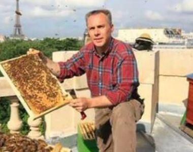 VIDEO   Albine pe acoperișul blocului, afacere cu fonduri europene