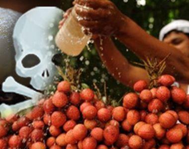 VIDEO. Fructul care ucide. Ce spun medicii și nutriționiștii români