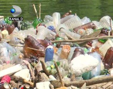 VIDEO | Un fluviu de gunoaie