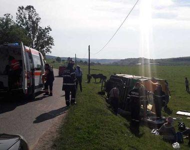Nouă turişti străini, răniţi după ce s-au răsturnat cu căruţa, pe un drum judeţean din...