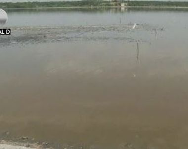 VIDEO | Fenomen ciudat pe Lacul Sărat