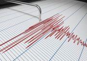 Cutremur de magnitudinea 7,3 în larg, în estul Indoneziei