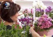 VIDEO | Școala pentru iubitorii de flori
