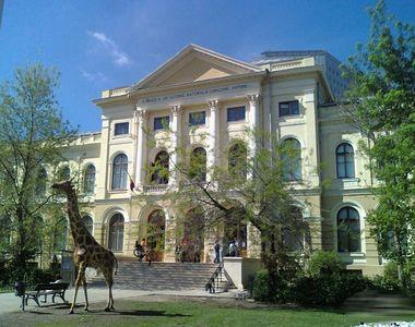 Guvernul României a cerut jumătate din parcul muzeului Antipa