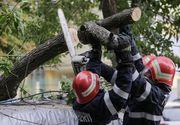 Furtună în Bucureşti: Zeci de copaci rupţi de vânt şi 21 de maşini avariate