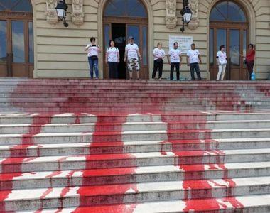 """Protest cu """"sânge"""" împotriva lui Tudorel Toader"""